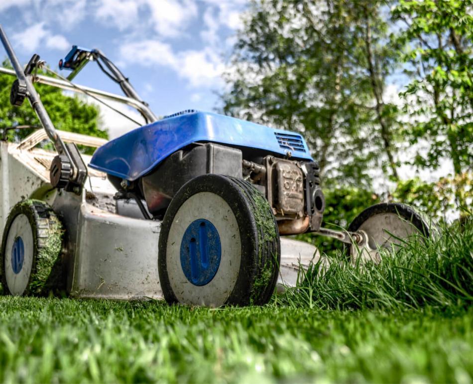 tagliaerba-giardinaggio-lawnmower.jpg